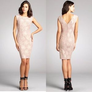 French Connection lace overlay sheath dress